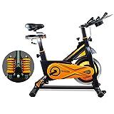 gridinlux. Trainer Alpine 6000. Bicicleta estática Ciclo Indoor. Volante Inercia 10 kg, Regulación Total de...
