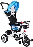 BYJY Los niños de Tres Mini-Bicicleta, Triciclo con toldos y Dos Frenos de Las Ruedas traseras, Apto para niños...