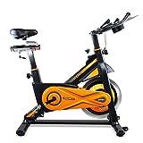 gridinlux. Trainer ALPINE-8000. Bicicleta de Spinning Pro-Indoor, Volante de Inercia 25 kg, Nivel Avanzado, Altura...