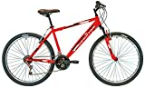 New Star - Bicicleta BTT 26'