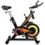 gridinlux. Trainer Alpine 6000. Bicicleta estática Spinning. Volante Inercia 10 kg, Regulación Total de...