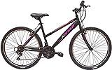 New Star - Bicicleta BTT 26'