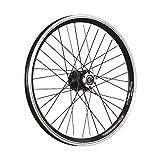 Taylor-Wheels 20 Pulgadas Rueda Delantera Bici Grünert Doble Pared Disco Negro