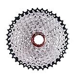 Lixa-da 9 Velocidades 11-40T MTB Bicicleta de Montaña Bicicleta Cassette Piñón Rueda Libre (9 Velocidades...